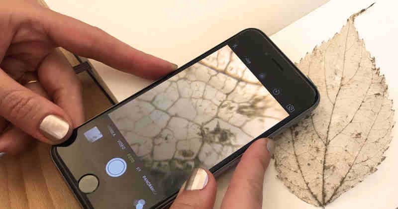 Turn your smartphone into a microscope