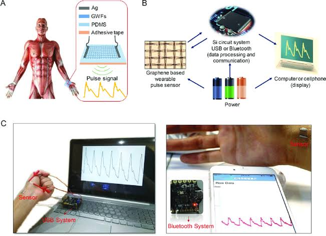 Wearable Tech: Patch-Based Health Diagnosis Sensor System